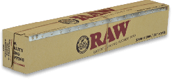 RAW 10m Parchment (6 Pack)